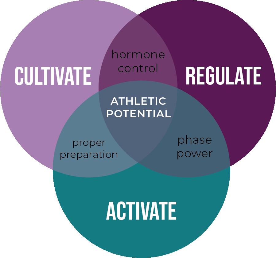 THPC process venn diagram